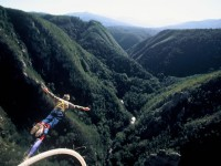 Face Adrenalin Bungy Jumping