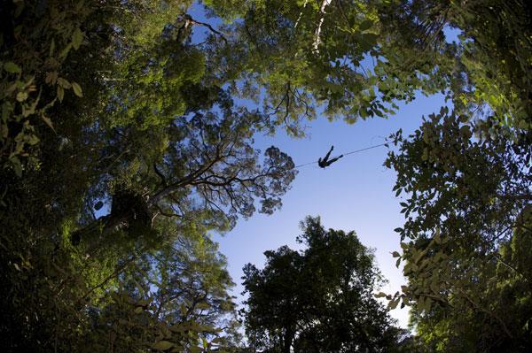 Tsitsikamma Canopy Tours Accommodation