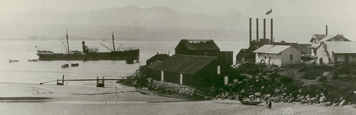 whaling-station