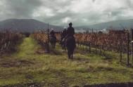 Horse riding at Bramon