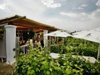 Bramon Wine Estate Restaurant