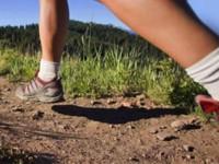 Bospad Trail Run
