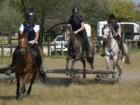 Fijnbosch Stud Riding School & Trail Rides