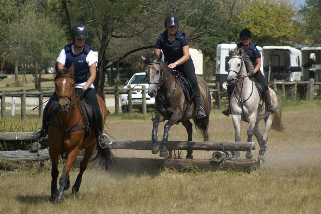 fijnbosch-equestrian