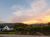 Newstead – Lund Family Vineyards