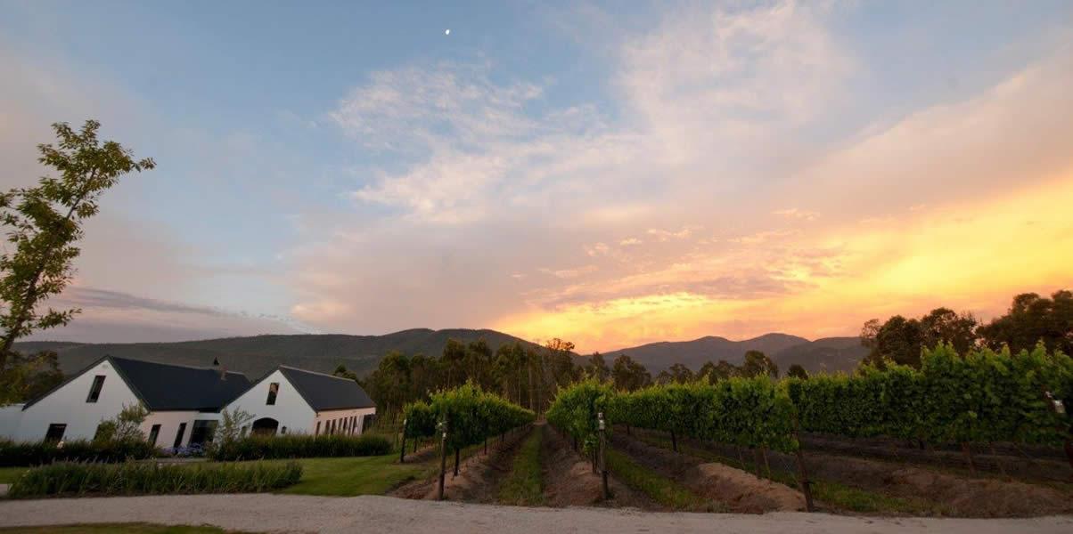 newstead lund family vineyards