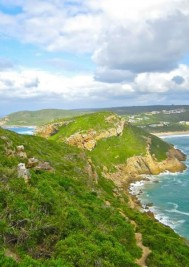 What's the #1 thing to do in Plett?
