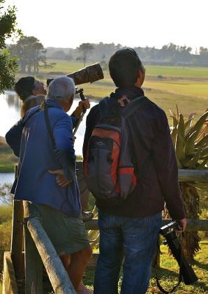 birding-with-gareth