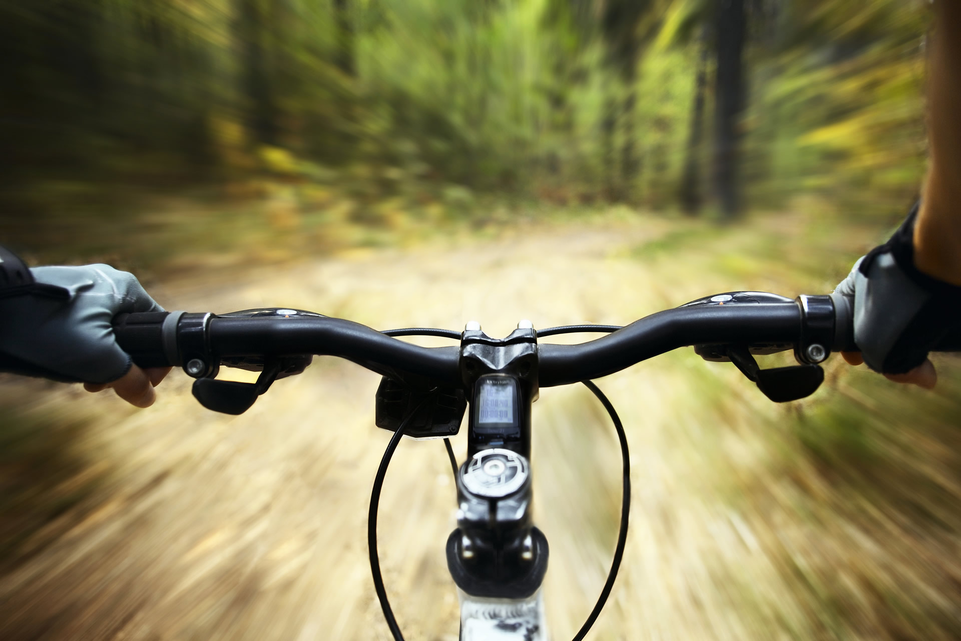 Cycling in Plett's forest trails