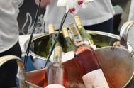 Sasfin Plett Wine & Bubbly Festival