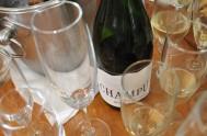 Plett Winelands and Sasfin Plett Wine & Bubbly Festival Launch