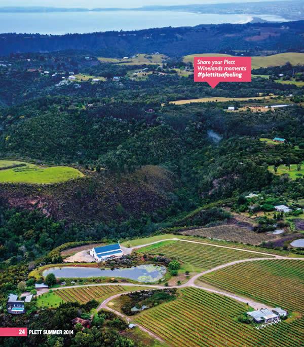 Bramon Wine Estate and the beautiful Robberg peninsula