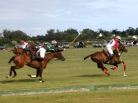 Young England wins Polo International at Stonefield