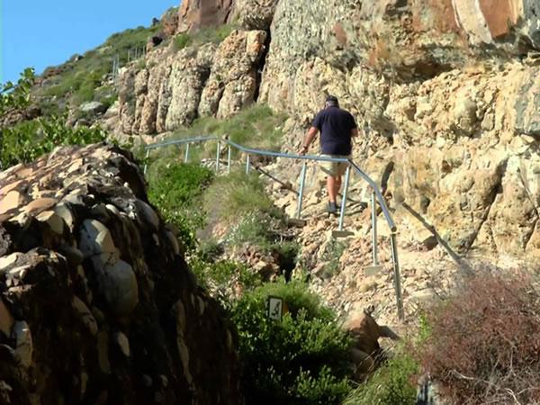 robberg-walk-hike-plett