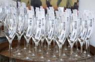 sasfin-plett-wine-and-bubbly-festival-1-8953