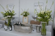 sasfin-plett-wine-and-bubbly-festival-1-8958