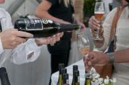 sasfin-plett-wine-and-bubbly-festival-1-8960