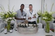 sasfin-plett-wine-and-bubbly-festival-1-8978