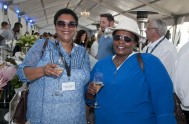 sasfin-plett-wine-and-bubbly-festival-1-9017