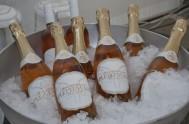 sasfin-plett-wine-and-bubbly-festival-1-9048