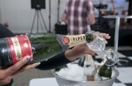 sasfin-plett-wine-and-bubbly-festival-1-9093
