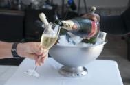 sasfin-plett-wine-and-bubbly-festival-1-9101