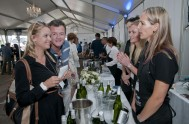 sasfin-plett-wine-and-bubbly-festival-1-9254