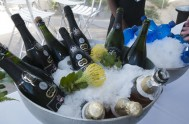 sasfin-plett-wine-and-bubbly-festival-1-9261