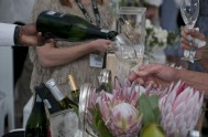 sasfin-plett-wine-and-bubbly-festival-1-9276