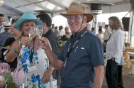 sasfin-plett-wine-and-bubbly-festival-1-9282