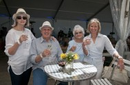 sasfin-plett-wine-and-bubbly-festival-1-9312