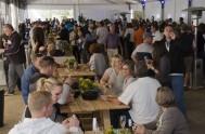 sasfin-plett-wine-and-bubbly-festival-2-1329