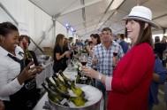 sasfin-plett-wine-and-bubbly-festival-2-1499
