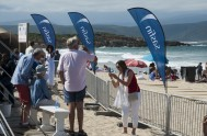 sasfin-plett-wine-and-bubbly-festival-2-9416