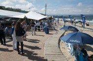 sasfin-plett-wine-and-bubbly-festival-2-9429