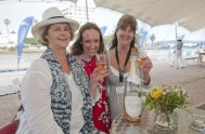 sasfin-plett-wine-and-bubbly-festival-2-9555