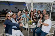 sasfin-plett-wine-and-bubbly-festival-2-9563