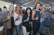 sasfin-plett-wine-and-bubbly-festival-2-9622