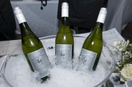 sasfin-plett-wine-and-bubbly-festival-2-9781
