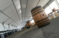 Wine barrel in the tent