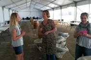 Anneke Barnard, Cindy Wilson-Trollip and Patty Butterworth discuss arrangements in the marquee.