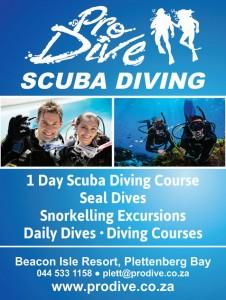 Pro-Dive-Plett-flyer