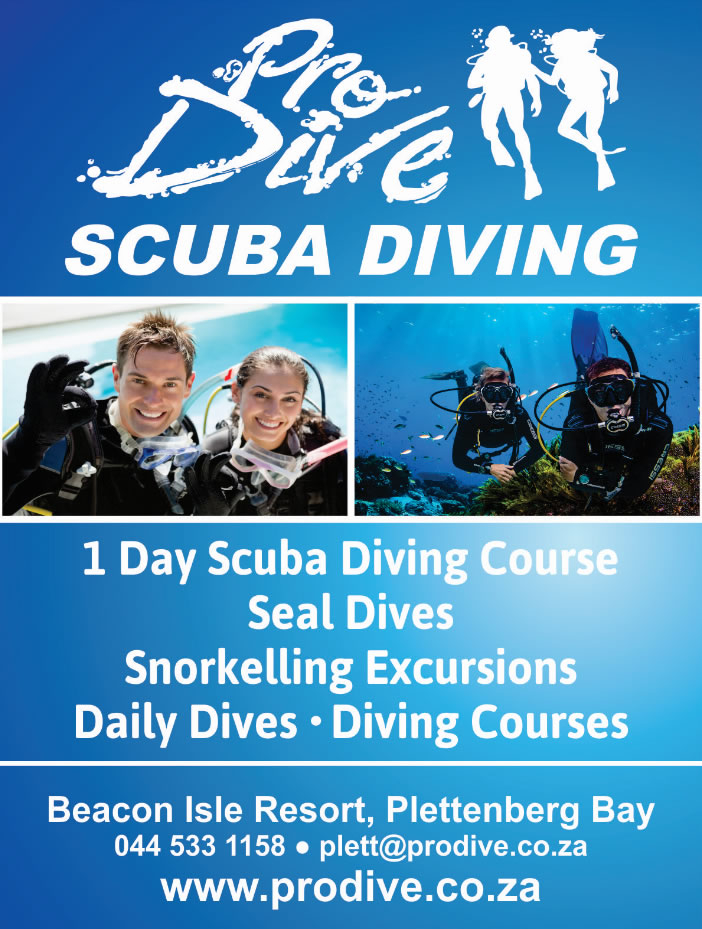 one day scuba diving course open water dive course one day scuba
