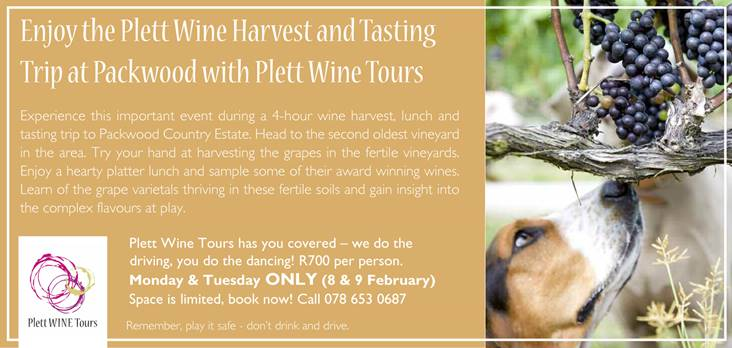 packwood-plett-wine-tours-special