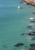 NSRI issues shark alert