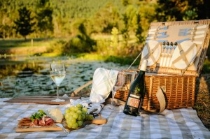Plettenberg Bay has become known for its food and wine festivals over the past few years, including its annual Wine & Bubbly Festival (photographed), and in April it will become home to the first Truck & Vine Festival at Redford Lane Wines.
