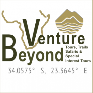 venture-beyond-logo