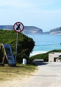 Bitou bye-law regarding dogs on beaches