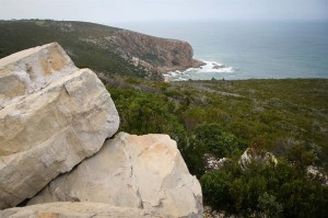 Plettenberg Bay has been selected as one of the top 10 places to visit in South Africa.