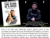The Echo of a Noise